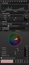 Phase One Capture One 5 colour editor