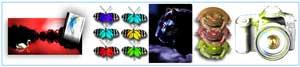 Photo-Courses logo
