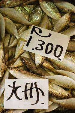 Photograph the produce