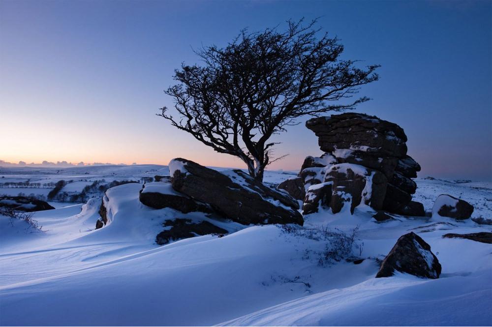 David Clapp snow