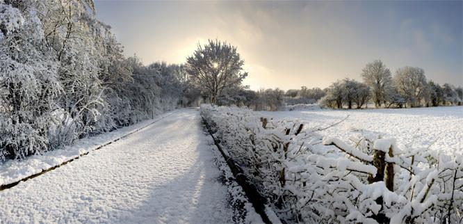 Snow-filled landscape