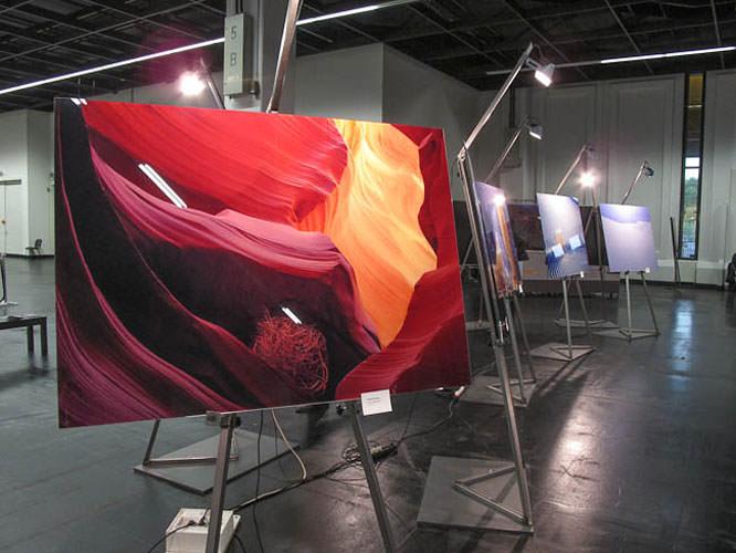 Frank Sirona exhibition