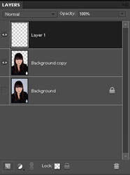 Layers Panel in Photoshop Elements