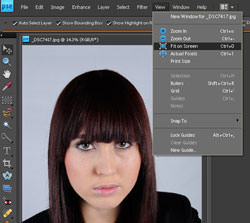 Fit to screen in Photoshop Elements