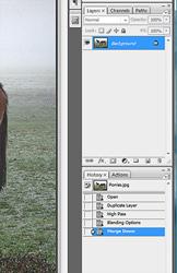 Sharpening photoshop tutorial