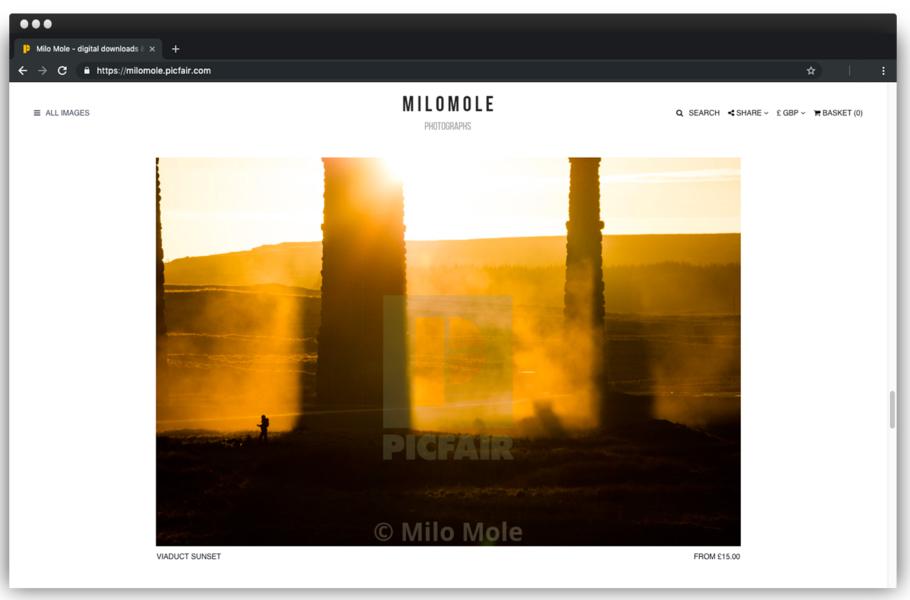 MiloMole