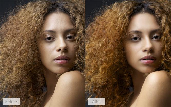 Portrait Pro 4
