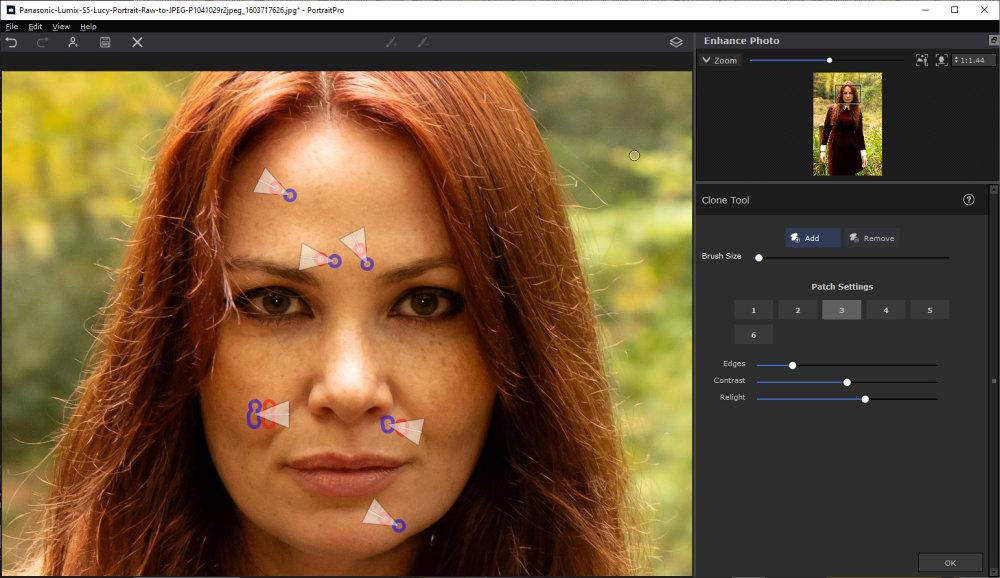 Portraitprov21 Clone Tool