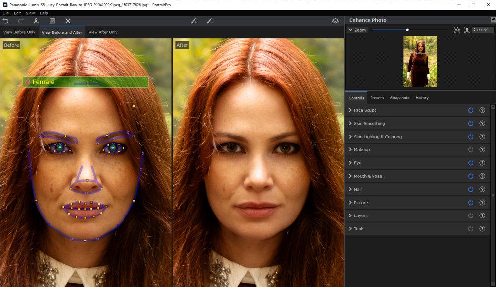 Portraitprov21 Face Selection Detection