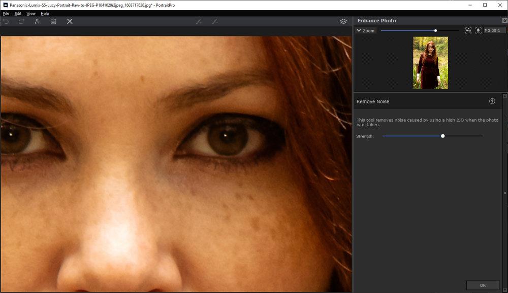 Portraitprovv21 Noise Reduction