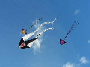 Ricoh CX5 Kites Normal