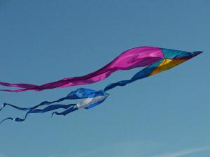 Ricoh CX5 Kites High Speed