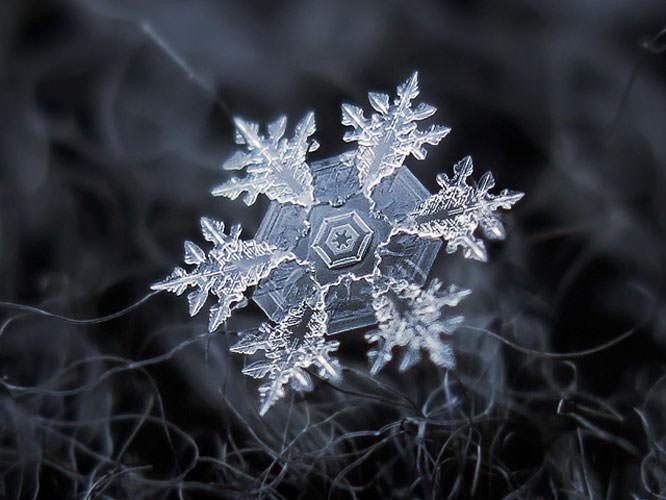 Alexey Kljatov snowflake