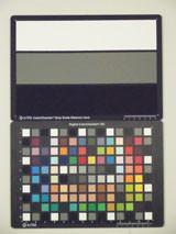 Samsung PL210 Digital Compact Camera ISO3200