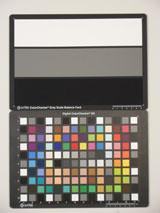 Samsung PL210 Digital Compact Camera ISO400
