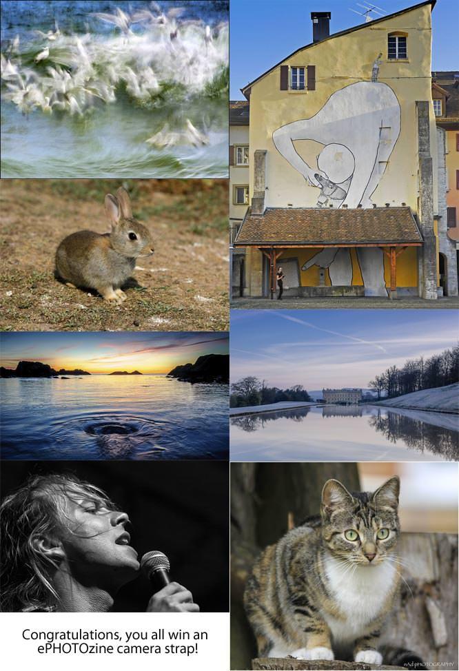 Photo Month winners week 3