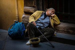 Sleeping Gentleman Candid Capture Wins 'Photo Of The Week' Title