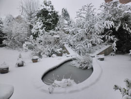 Snow Scene shooting mode off