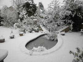 Snow Scene shooting mode on