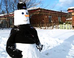 Snowman's photoshoot on ePHOTOzine
