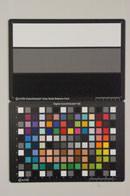 Sony Alpha A55 Test chart ISO12800