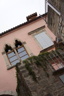 Sony NEX-5 pink houses