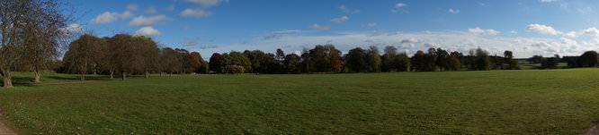 Panorama 1   1/250 sec   f/11.0   16.0 mm   ISO 100
