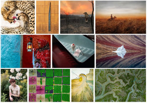 Sony World Photography Awards Open Competition 2020 Category Winners & Shortlist Announced