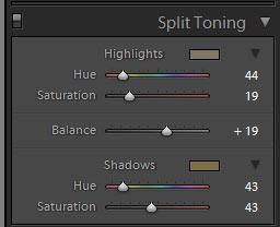 Adjust Highlights And Shadows