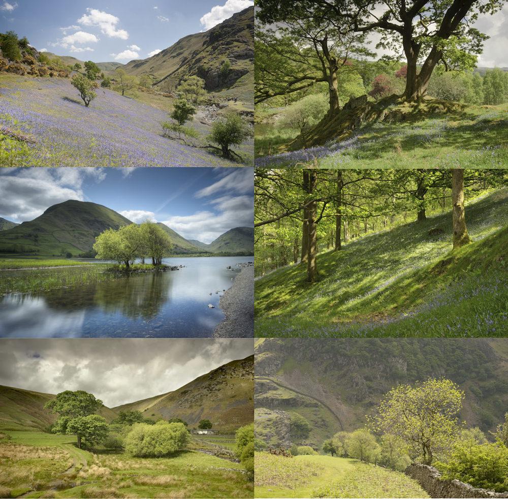 Spring Landscape Photography Tips