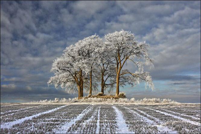 Robert Fulton – Winter Field, Stirlingshire, Scotland