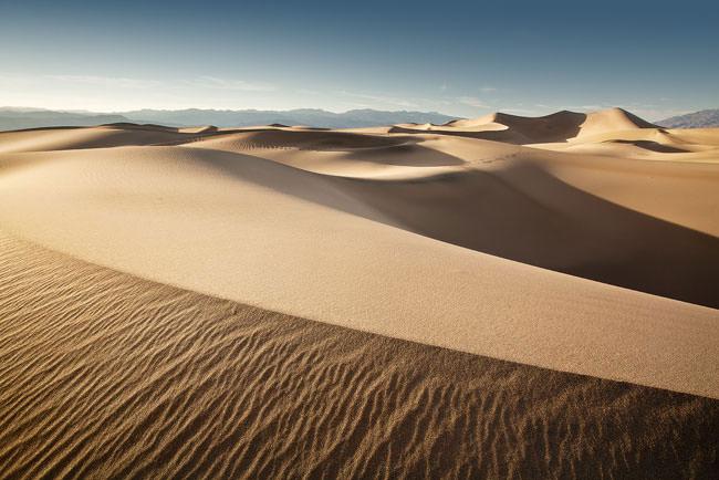 Dawn Dunes