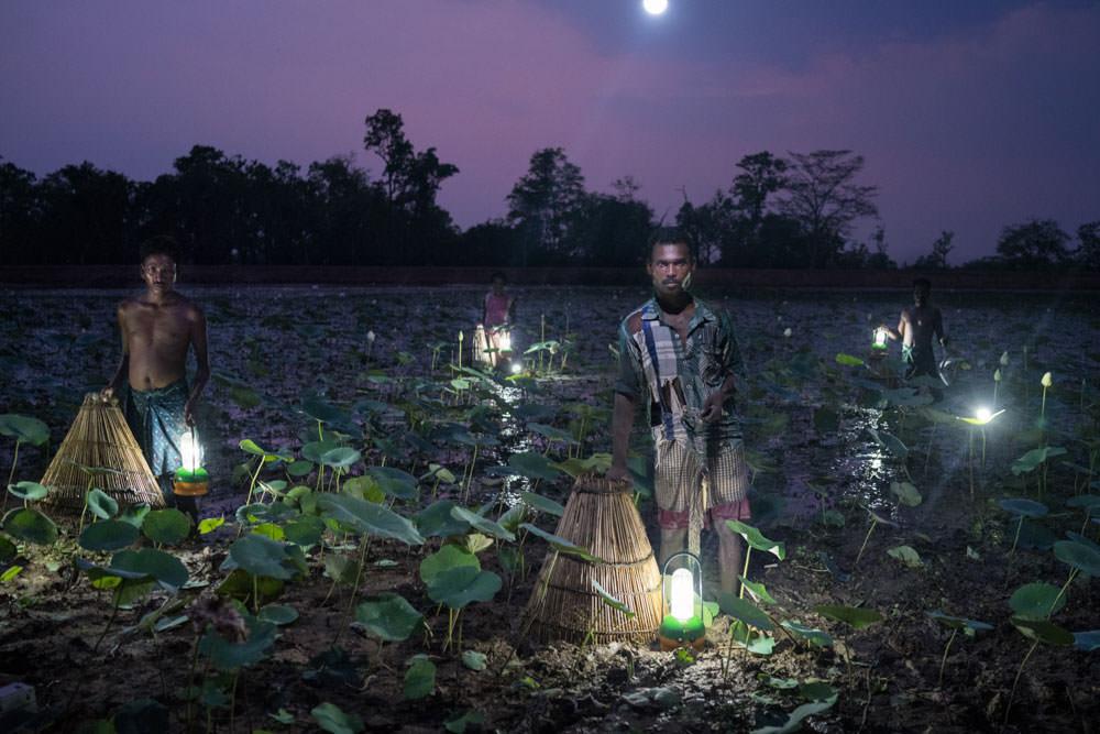 Solar Portraits India,