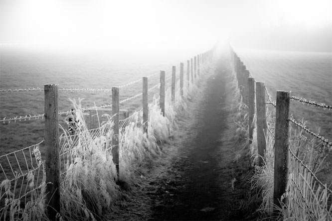 Frosty path