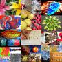 Thumbnail : Ten Ways To Get Kids Into Photography