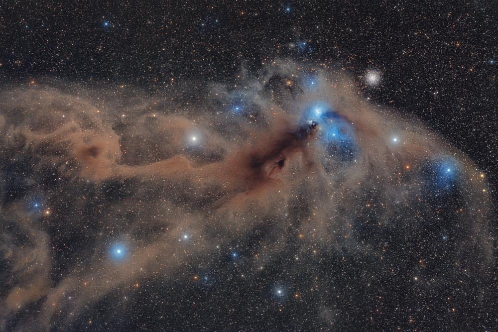 Corona Australis Dust Complex © Mario Cogo