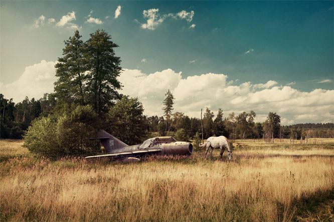 Wings of Glory by Adam Orzechowski