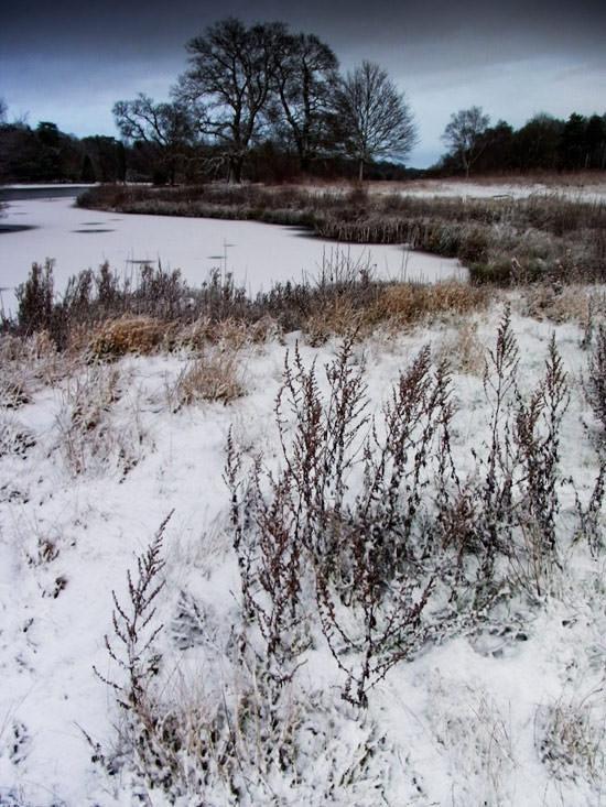 snow scene using graduated grey filter