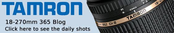Tamron 18-270mm 365 Blog