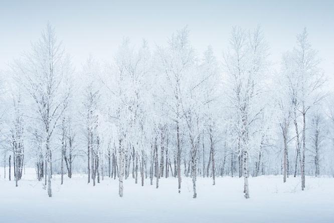 Snow, Sweden