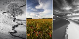 Top Tips On Capturing Landscapes In A Portrait Orientation