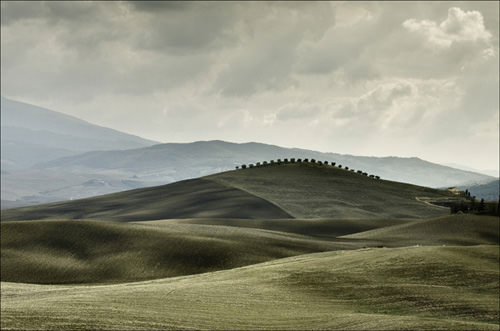 Tuscany fields and shadows