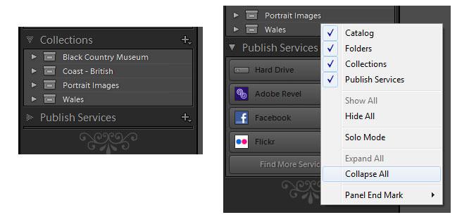 Panel options