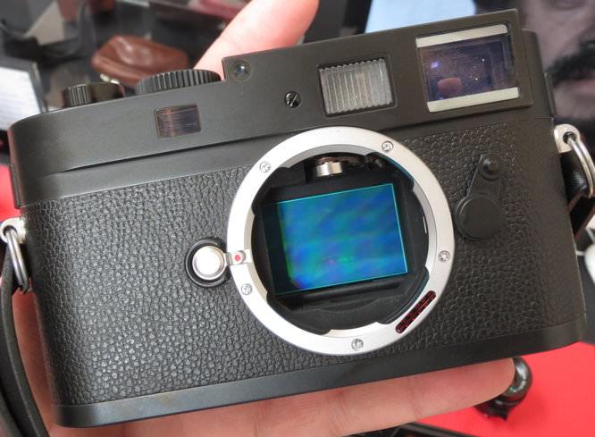 Leica M Monochrom Sensor