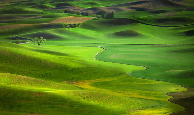 Landscape by Antony Spencer