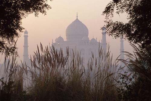 Taj Mahal by Steve Davey