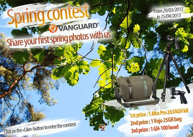 Vanguard Spring Contest