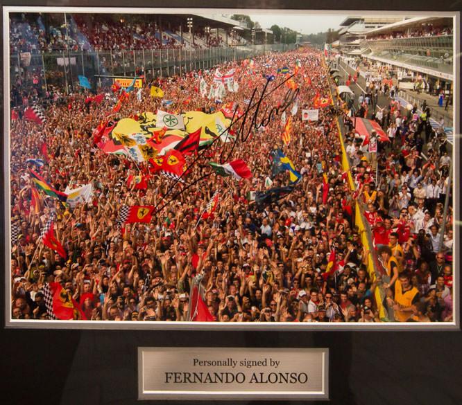 Fernando Alonso signed image