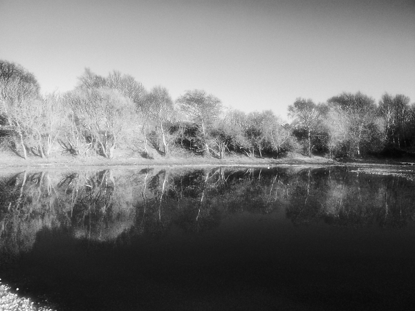 6-settley-pond-in-infrared.jpg