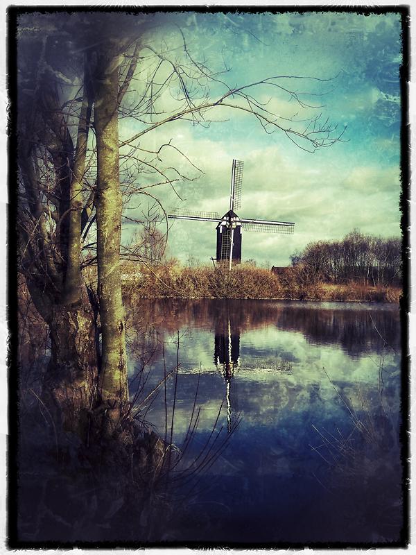 windmilltreesnapseed-up.jpg